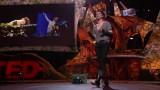 Chief Executive Artist: Amanda Palmer Talks Art & Technology